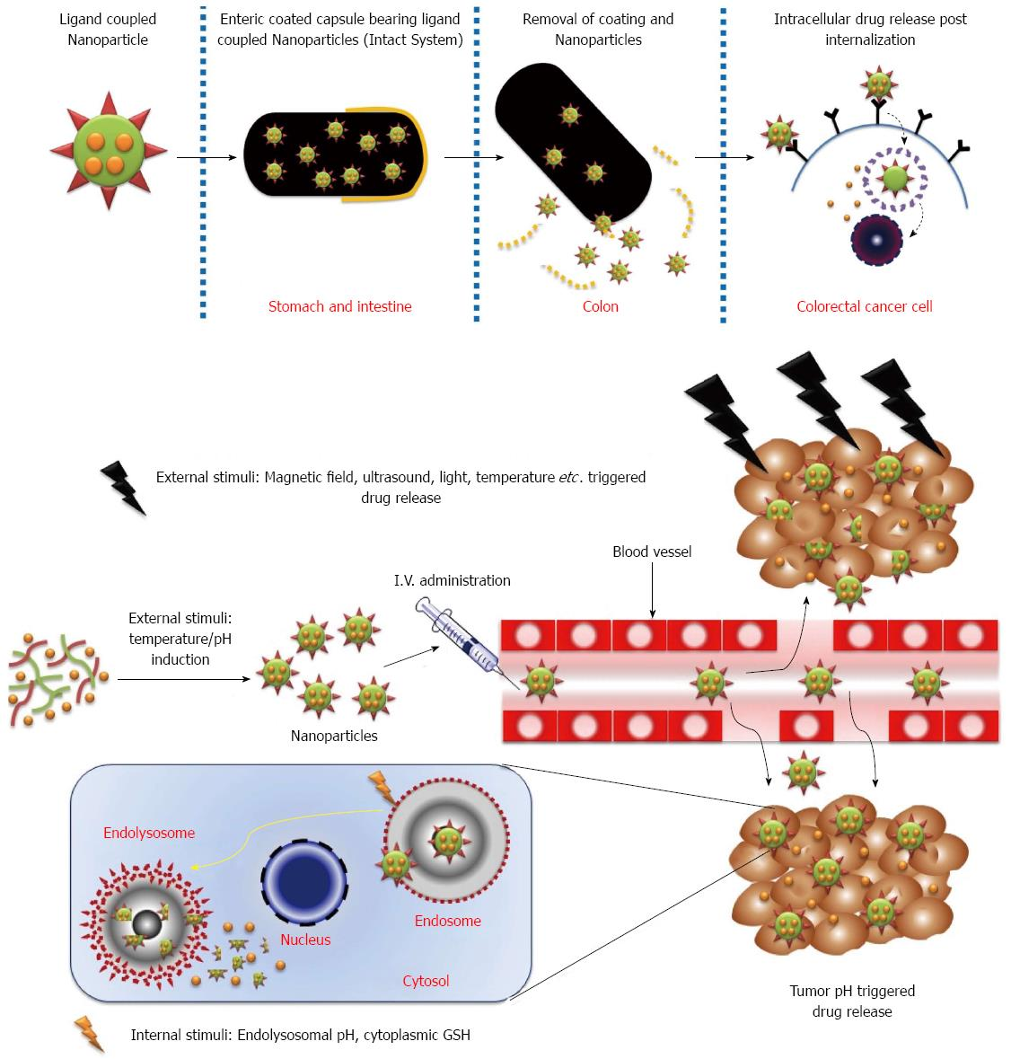 Insight To Drug Delivery Aspects For Colorectal Cancer