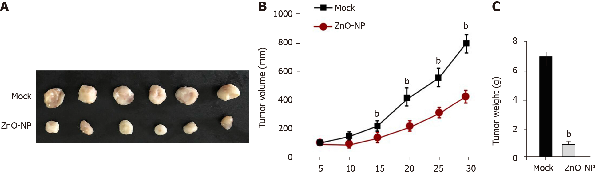 Zinc oxide nanoparticles reduce the chemoresistance of