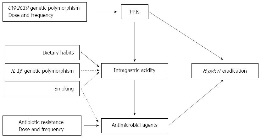 Treatment Of Helicobacter Pylori Infection Current Status And