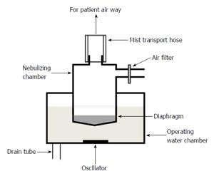 Efficient management and maintenance of ultrasonic nebulizers to