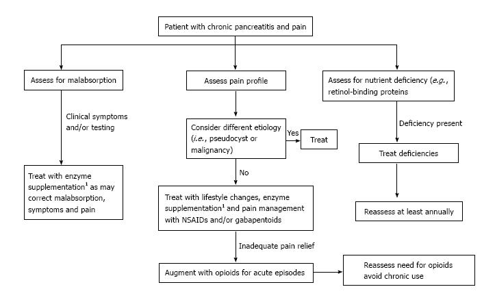 Management Of Pain In Chronic Pancreatitis With Emphasis