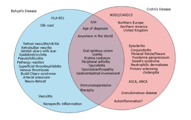 Similarities And Differences Between Beh 231 Et S Disease And