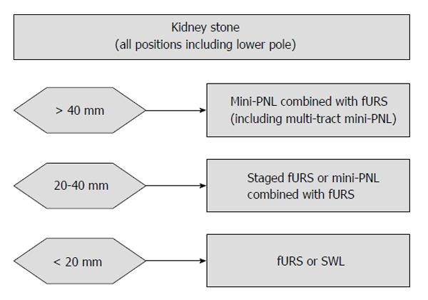 Appropriate Kidney Stone Size For Ureteroscopic Lithotripsy When To Switch To A Percutaneous Approach