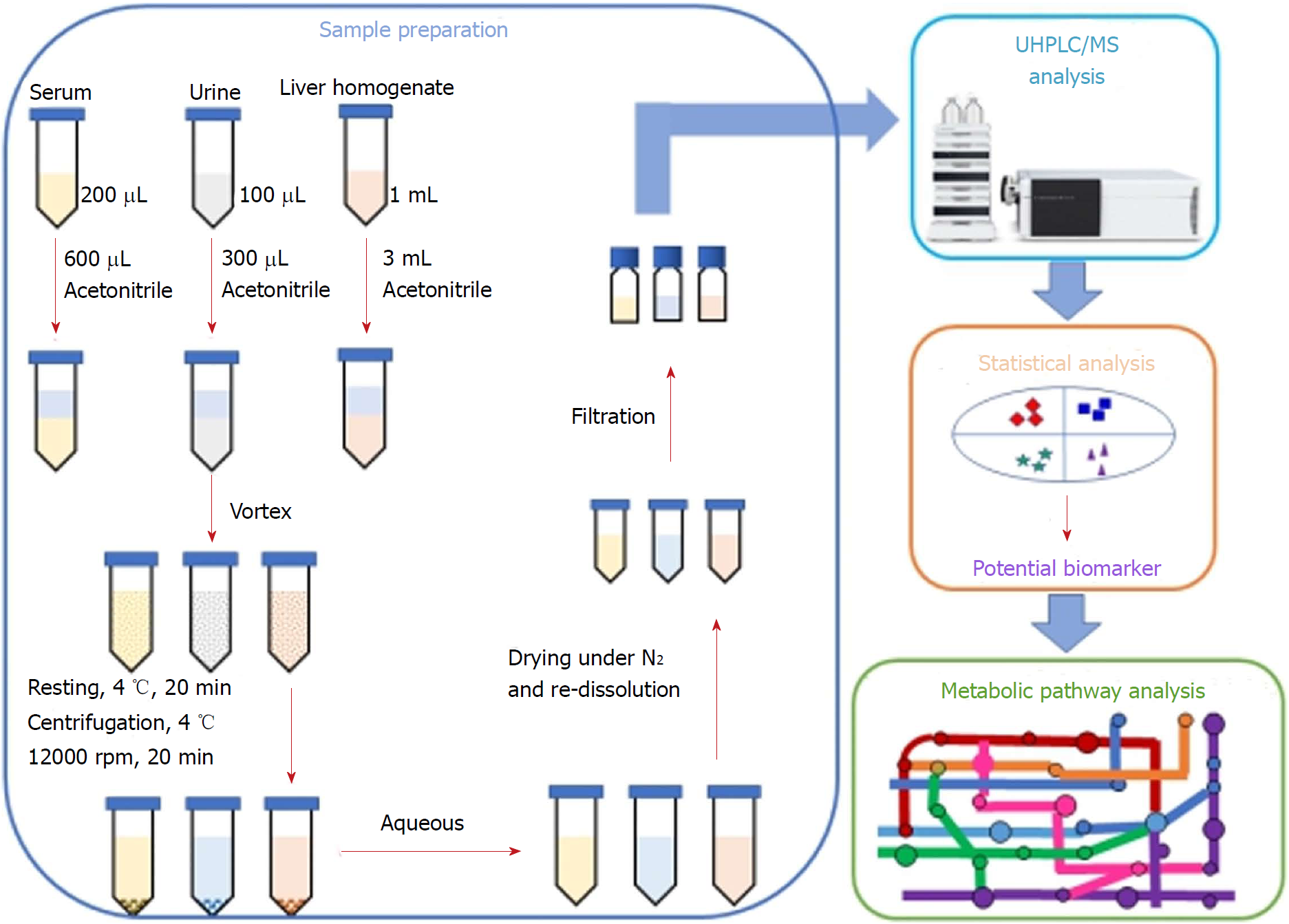 Integrated metabolomic profiling for analysis of antilipidemic