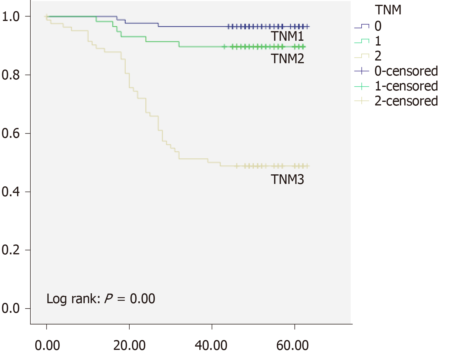 Perineural Invasion As A Prognostic Factor In Patients With Stage I Iii Rectal Cancer 5 Year Follow Up