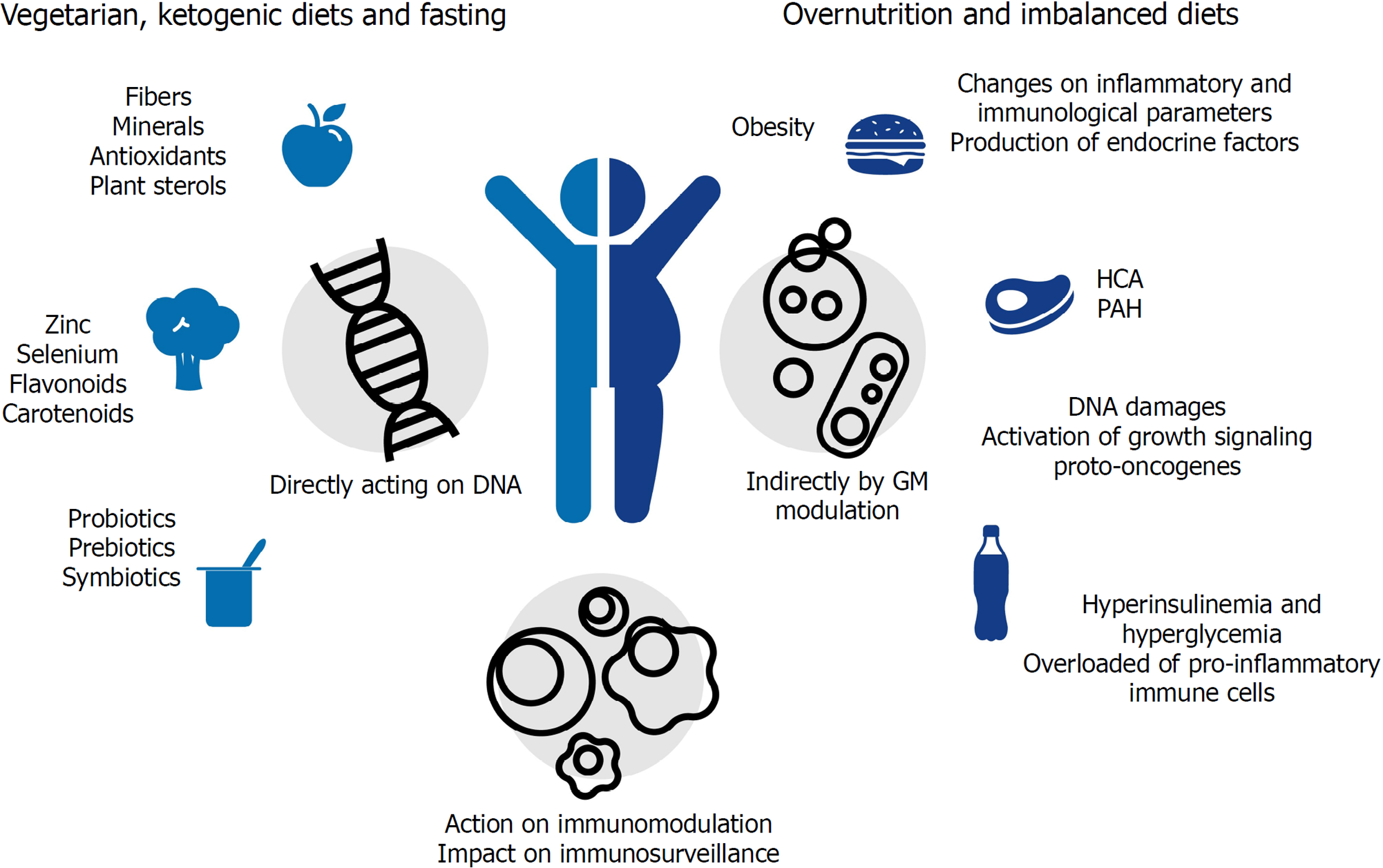 Role Of Diet And Gut Microbiota On Colorectal Cancer Immunomodulation