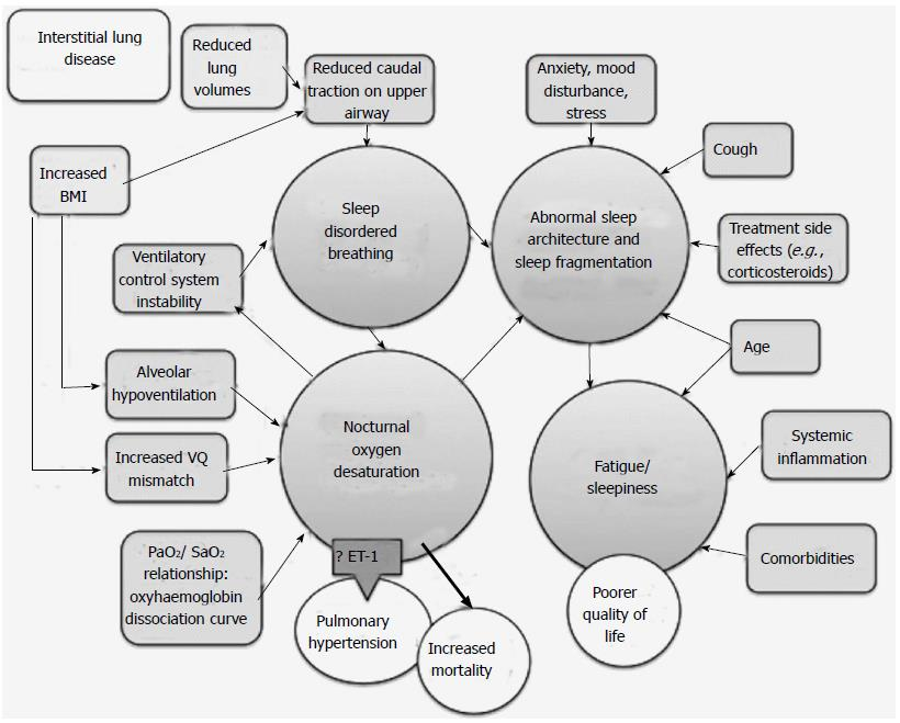 Sleep disordered breathing in interstitial lung disease: A review