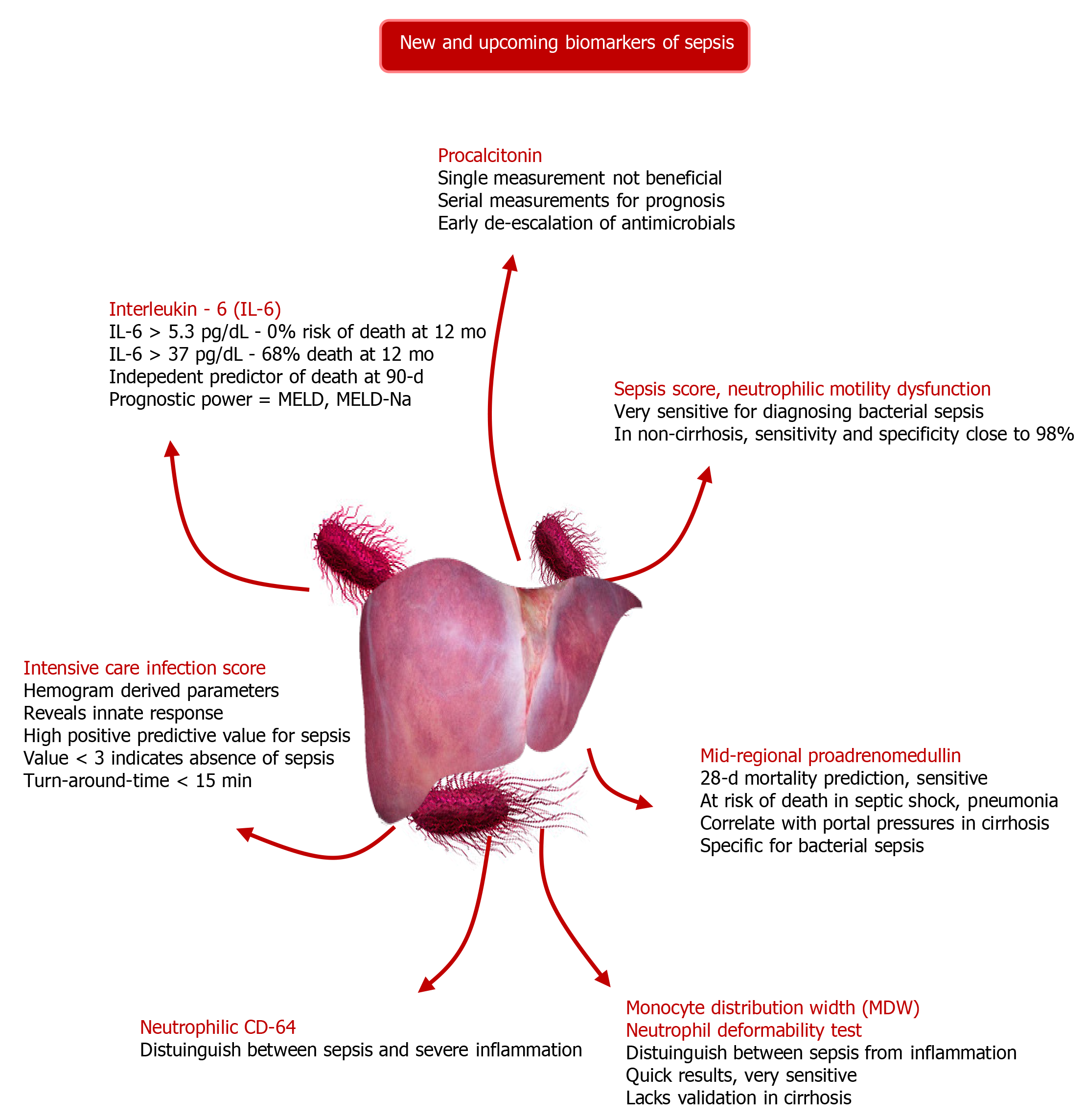Update On Diagnosis And Management Of Sepsis In Cirrhosis Current Advances
