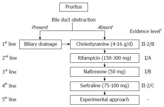 Recent advances in the management of pruritus in chronic