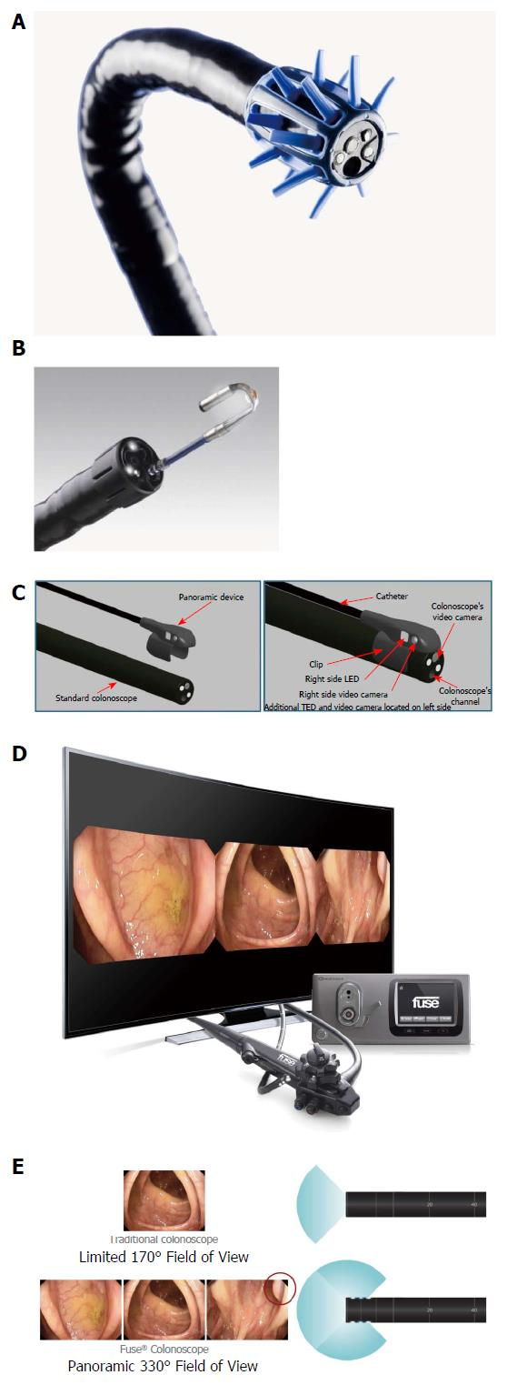 View Endoscopy Procedure: Evidence Based Recommendations On