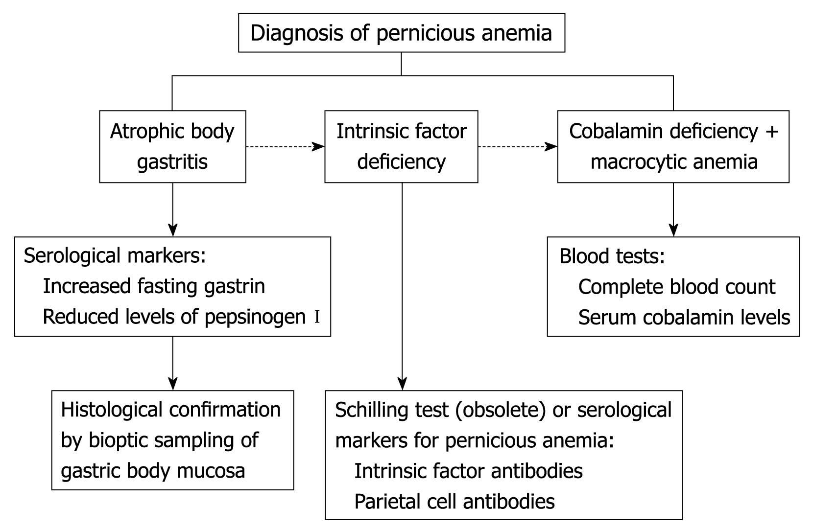 Anemia. What are the consequences of severe anemia and how does it end if left untreated