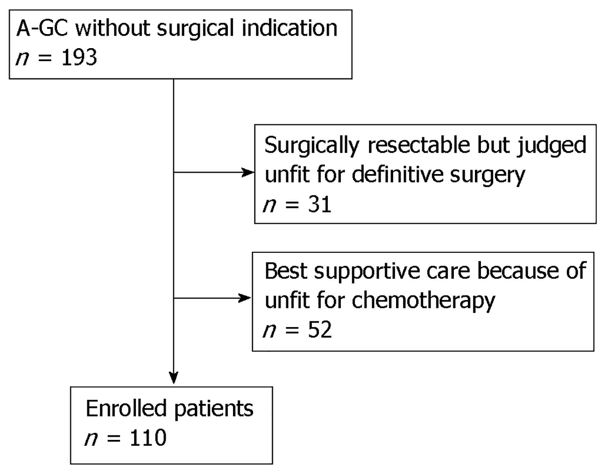 Impact of time from diagnosis to chemotherapy in advanced