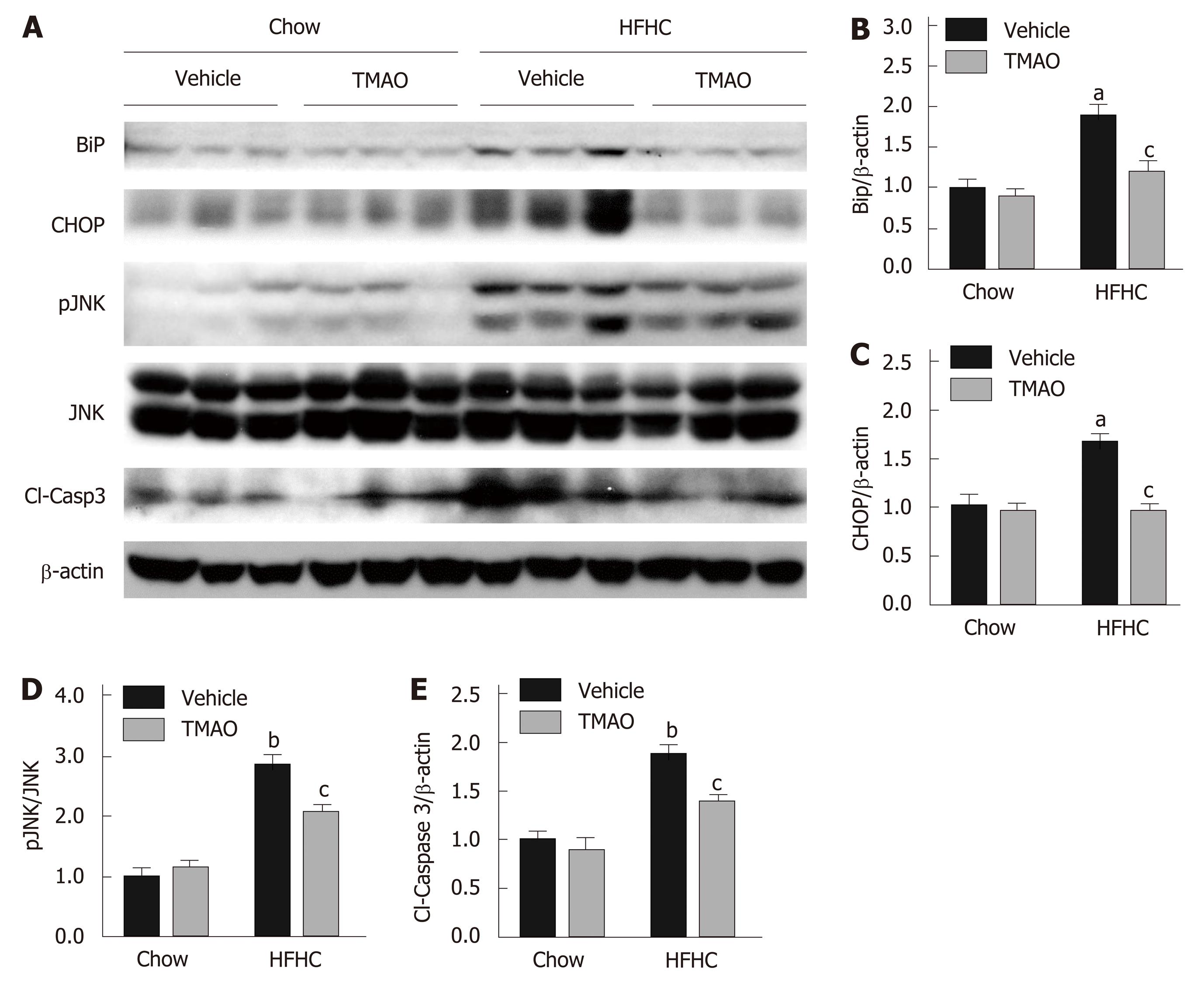 Trimethylamine N-oxide attenuates high-fat high-cholesterol