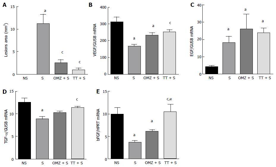 維生素c 胃潰瘍 サプリメント   効果