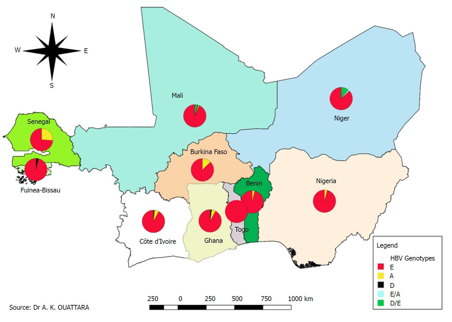 Genetic diversity of hepatitis viruses in West-African countries