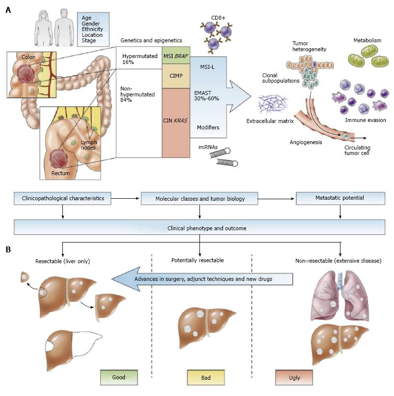 Can Molecular Biomarkers Replace A Clinical Risk Score For Resectable Colorectal Liver Metastasis