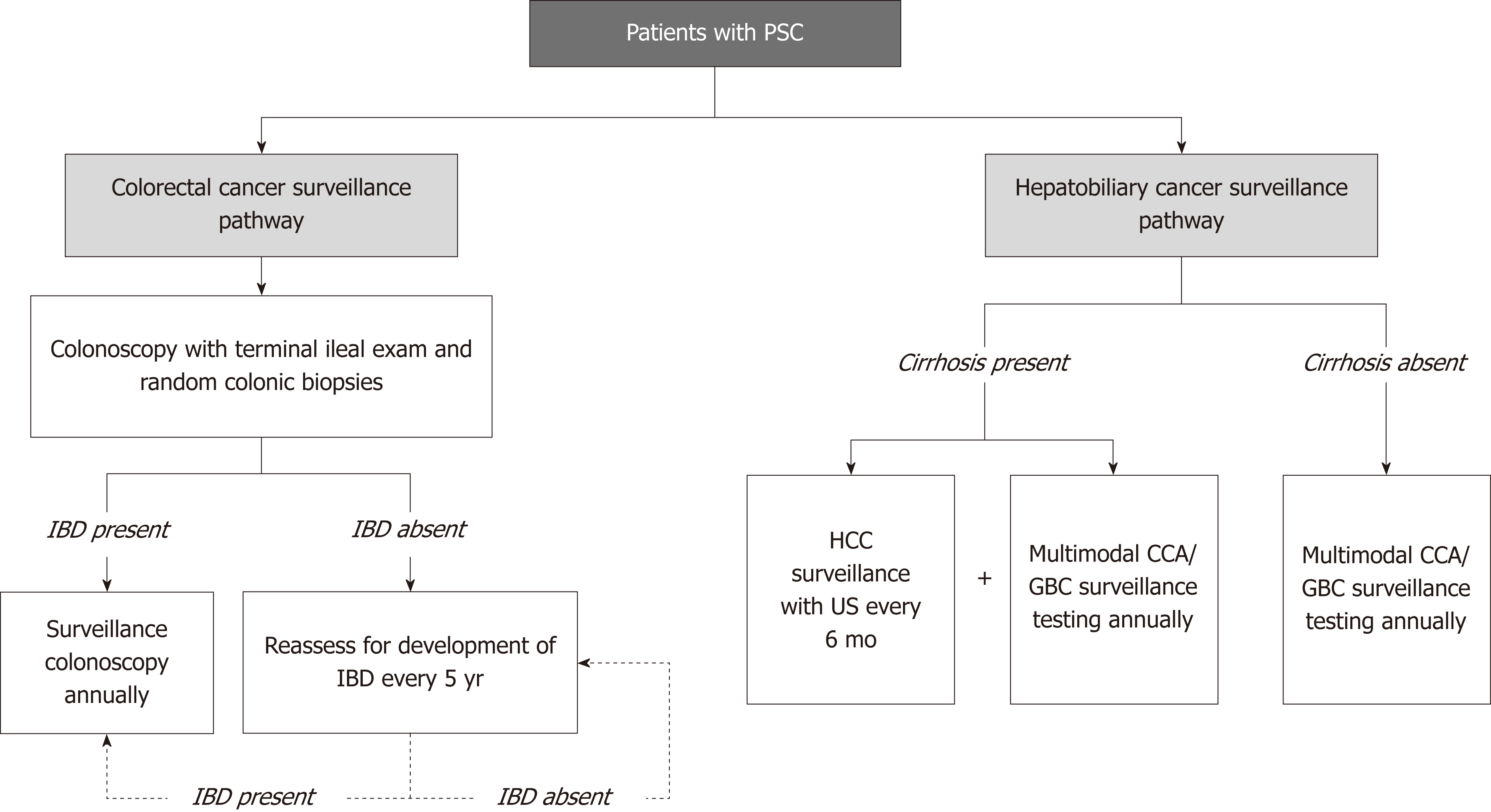Cancer risk in primary sclerosing cholangitis: Epidemiology