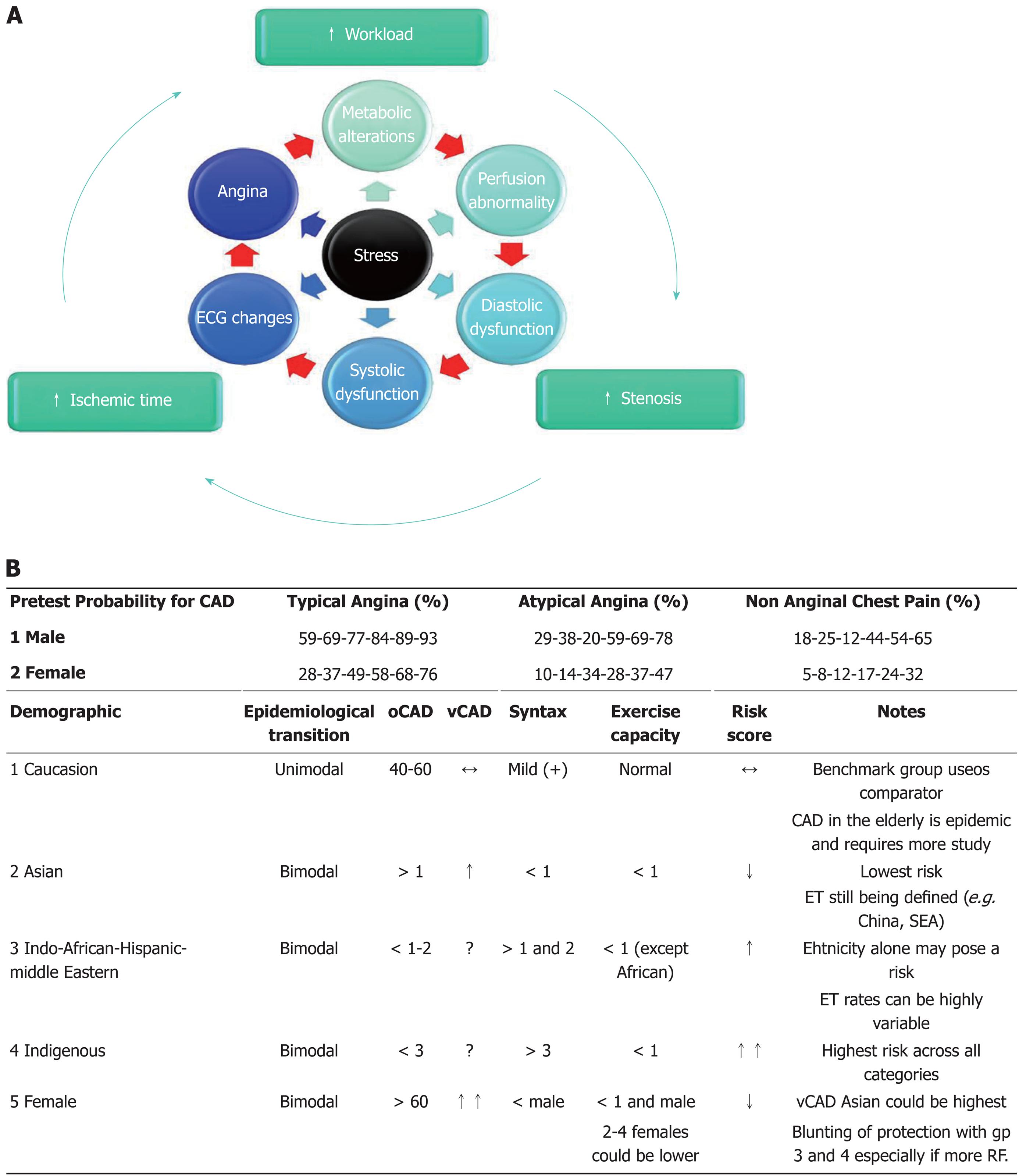 Risk stratification for coronary artery disease in multi