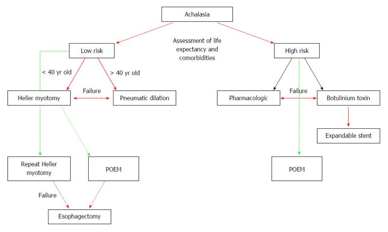 New insights into the pathophysiology of achalasia and