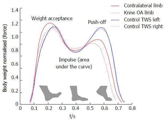 Figure 3 Mean Gait Patterns During Stance Phase Of Controls Blue And Knee Osteoarthritis Patients Red At Similar Sds Oa Tws Top