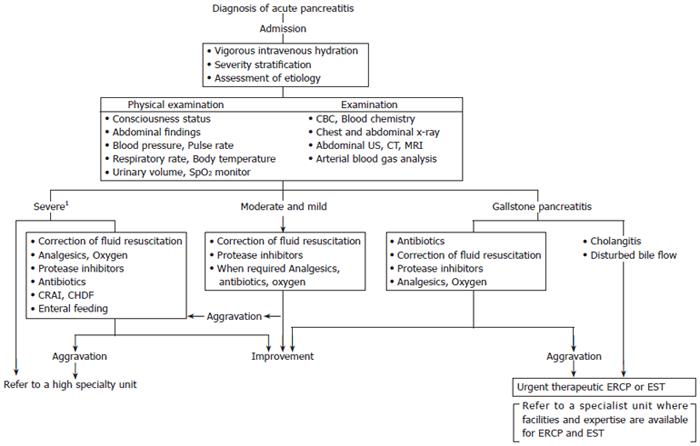 Consensus of primary care in acute pancreatitis in Japan