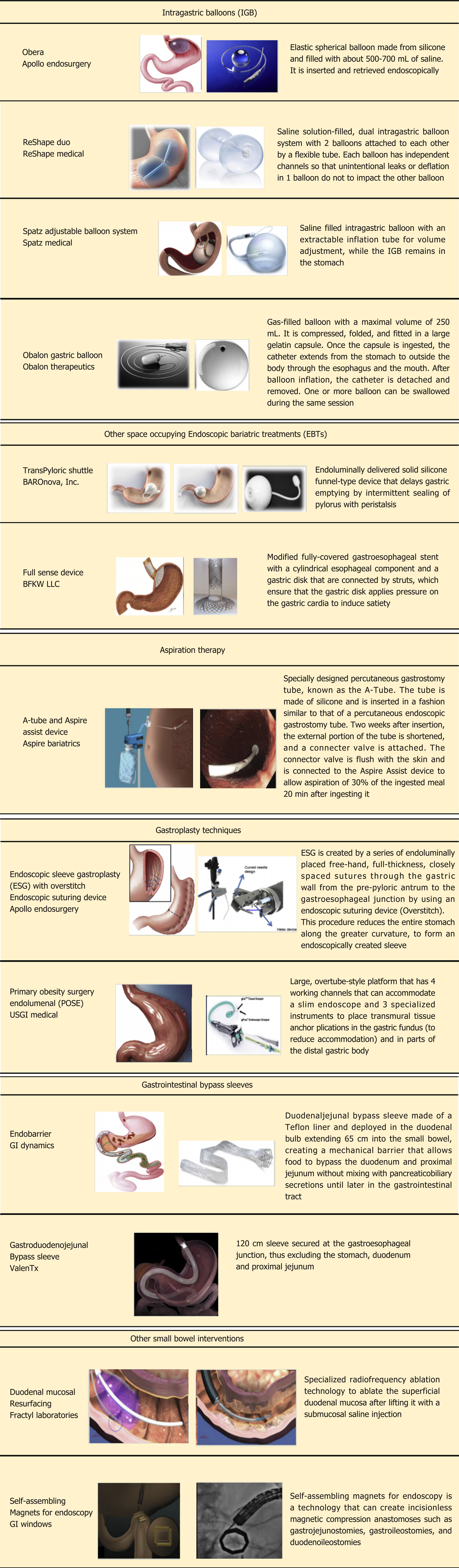 New Era: Endoscopic treatment options in obesity–a paradigm