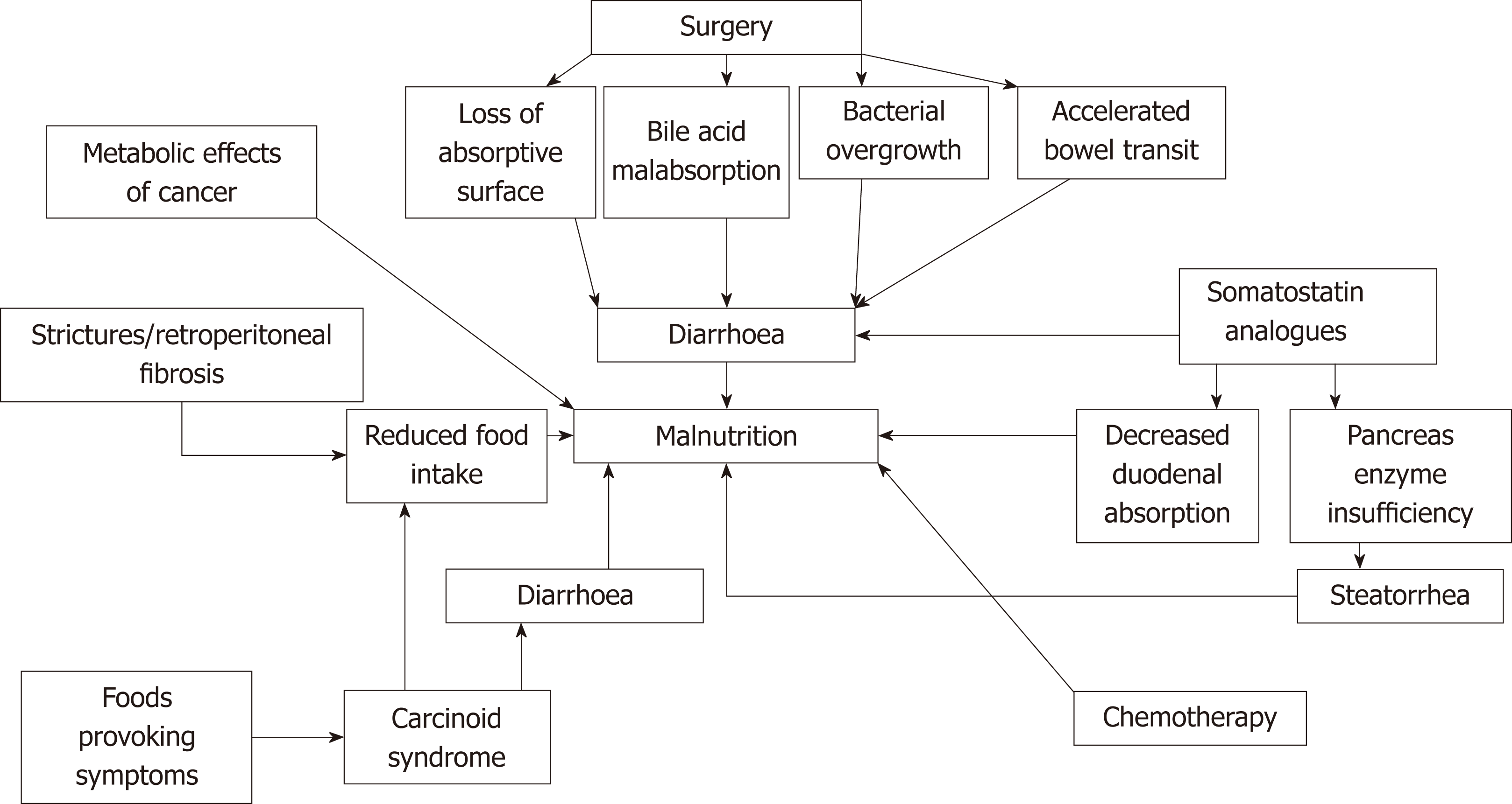 Nutritional and vitamin status in patients with
