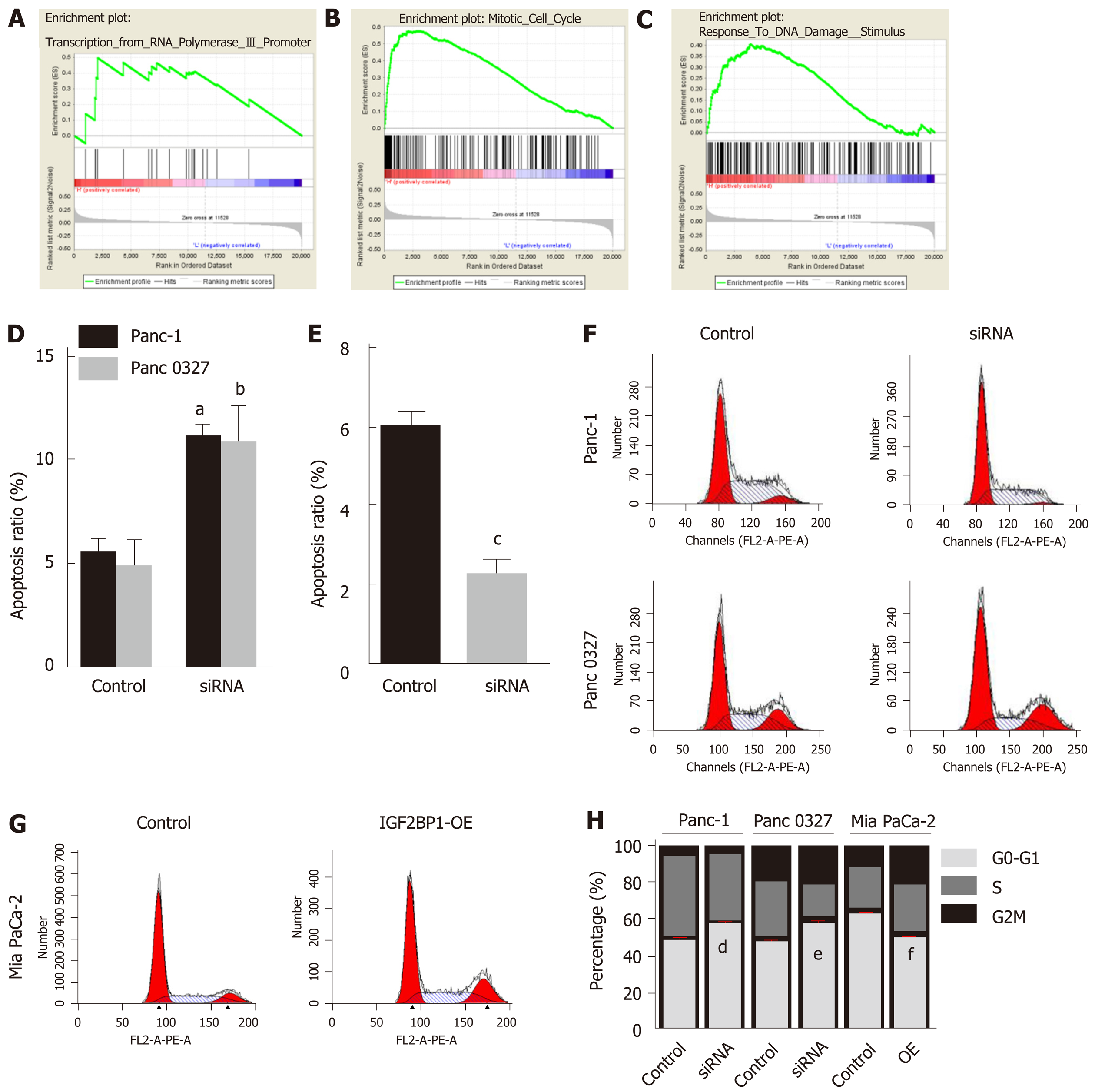 Insulin-like Growth Factor 2 MRNA-binding Protein 1