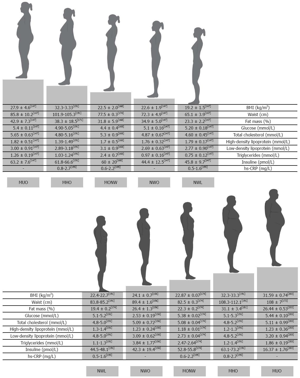 body fat percentage for average woman
