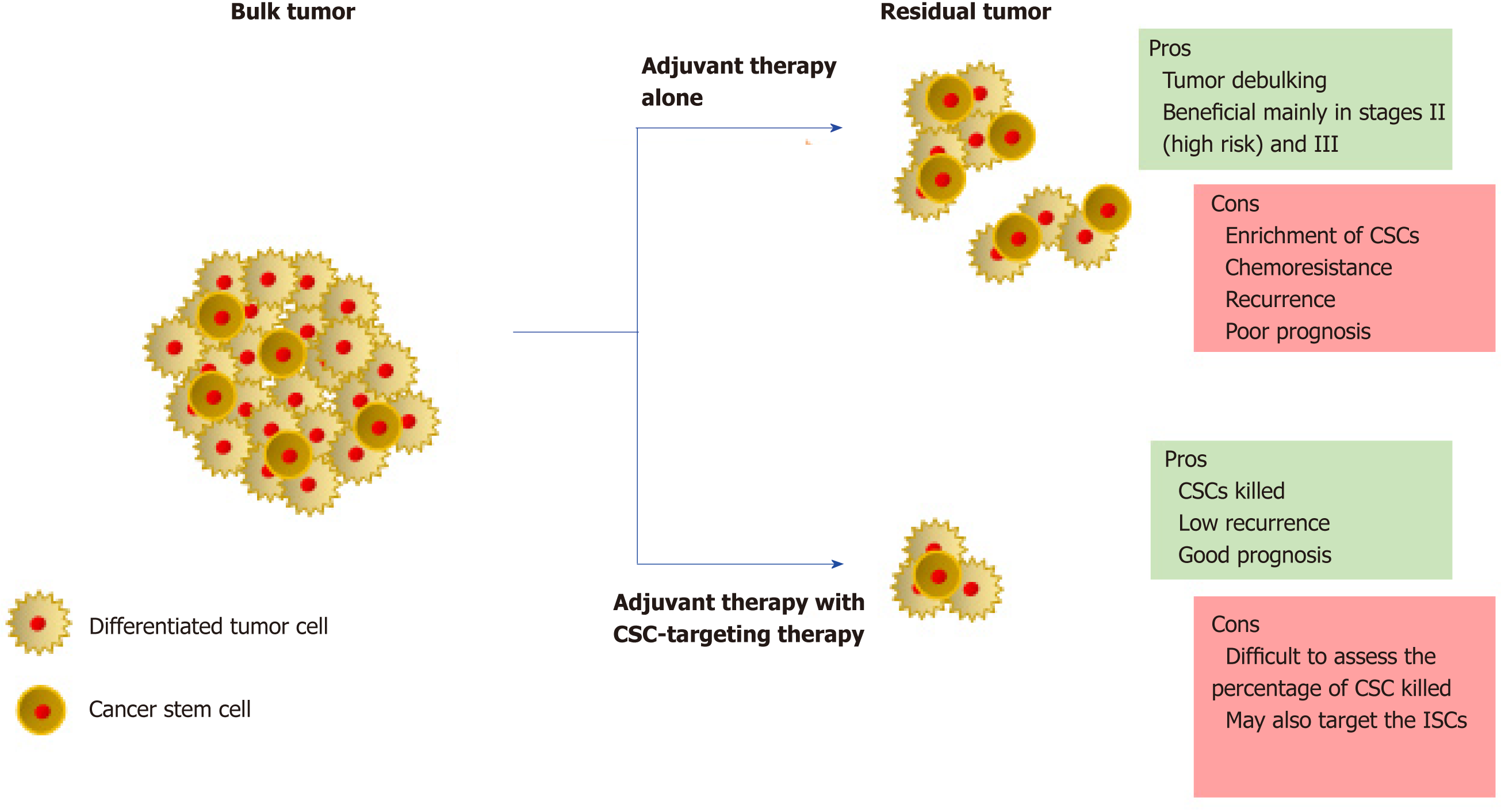 Linking Stemness With Colorectal Cancer Initiation Progression And Therapy