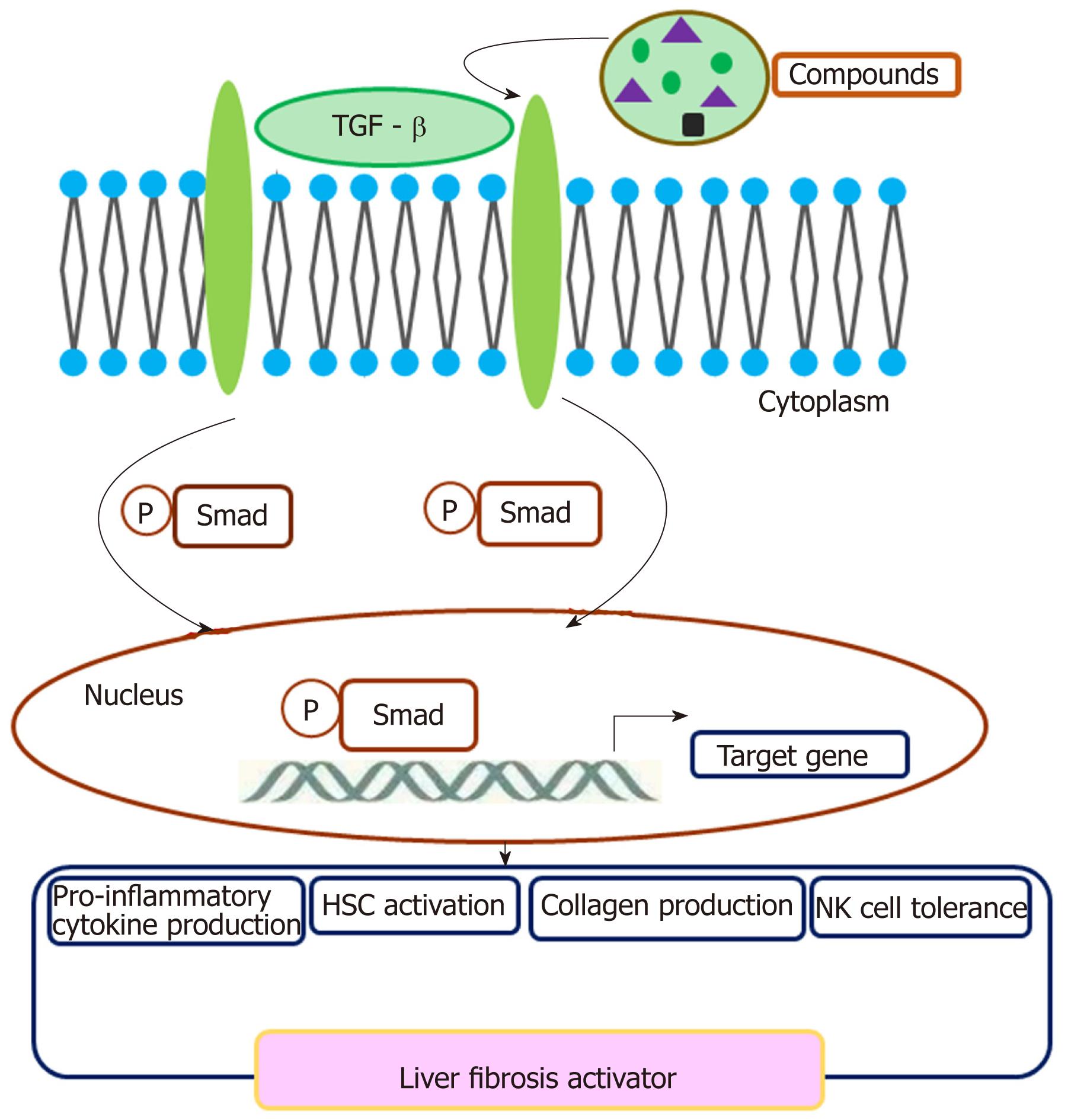 Crosstalk network among multiple inflammatory mediators in