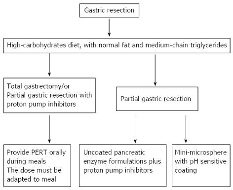 Exocrine pancreatic insufficiency in adults: A shared position ...