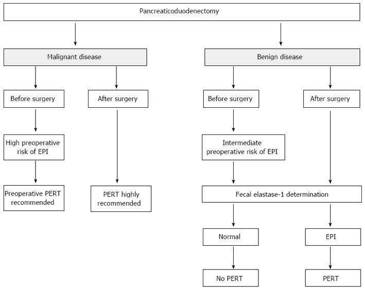 Exocrine pancreatic insufficiency in adults: A shared